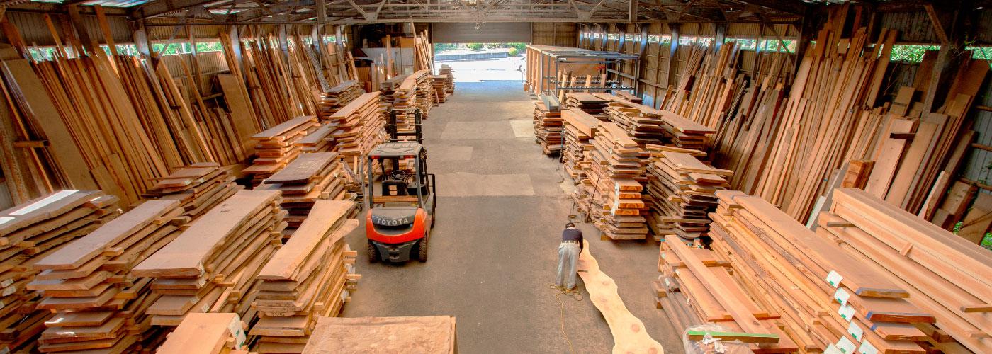 約1700枚の一枚板を保管する天然木工房